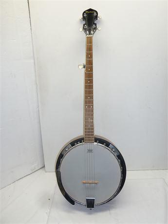 Davison 5 String Banjo/Remo Head, Good Condition