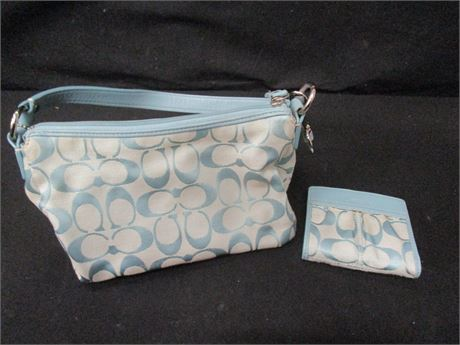 Coach Baby Blue and Grey Small Purse and Wallet