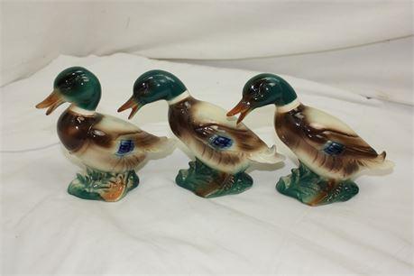 3 Vintage Royal Windsor Mallard Ducks #2