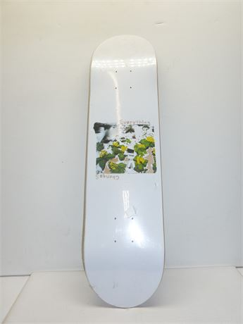 "Everything Changes Skateboard(Board Only) 30.5""x7.5"" Newish"