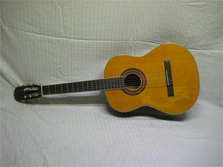 Carlo Robelli CCGTRPACK Acoustic Guitar