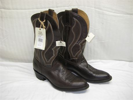 CODY JAMES Men's CHOCOLATE Boots Size 10D Brand New